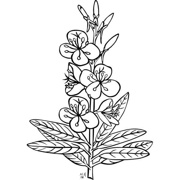 דף צביעה ענף מלא פרחים