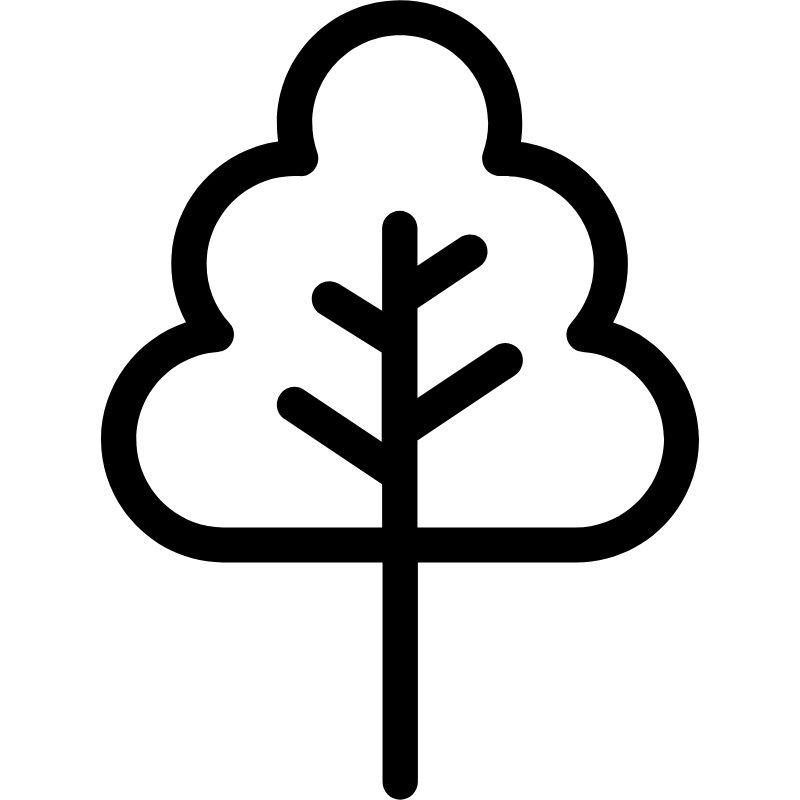 דף צביעה עץ 4