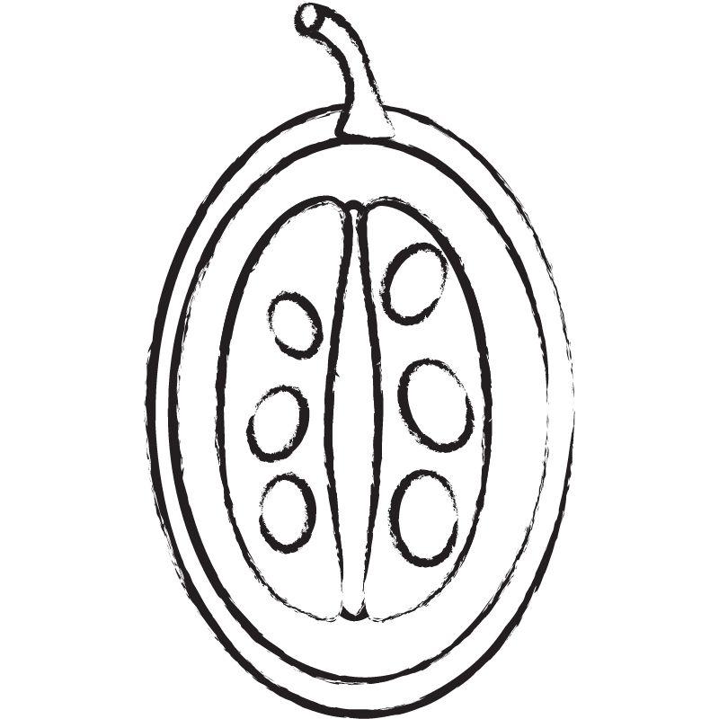 דף צביעה אפרסמון