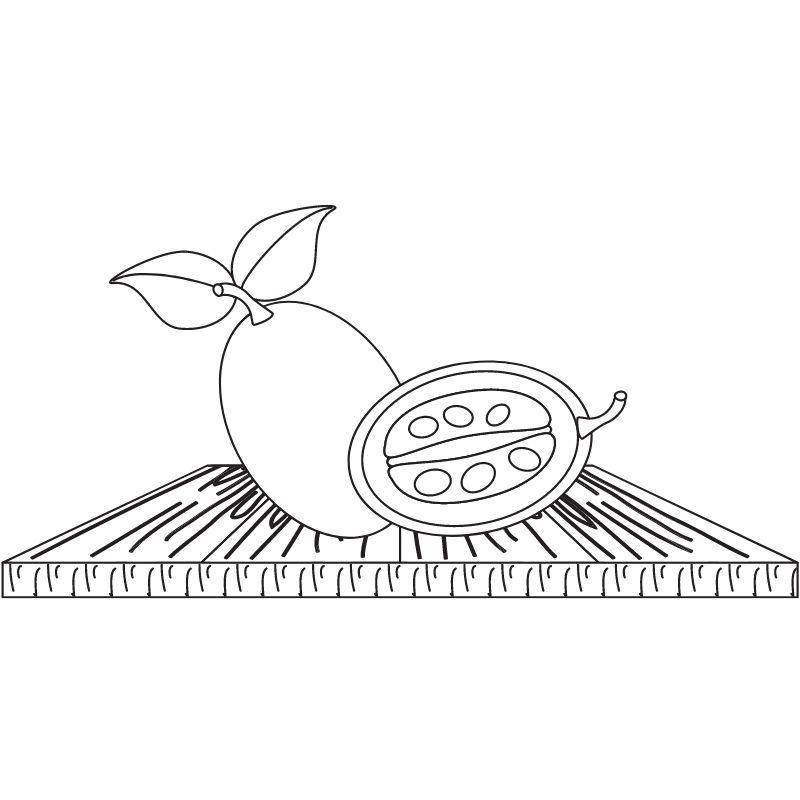 דף צביעה אפרסמון ותפוז